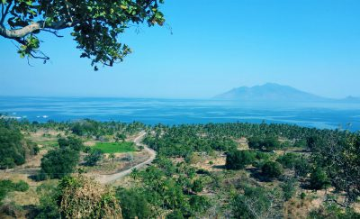 Hatfield to conduct substantial review of coastal and marine habitat protection, restoration and enhancement within the Indonesian Sea Large Marine Ecosystem (ISLME) region