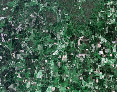Monitoring a Productive Healthy Forest Landscape